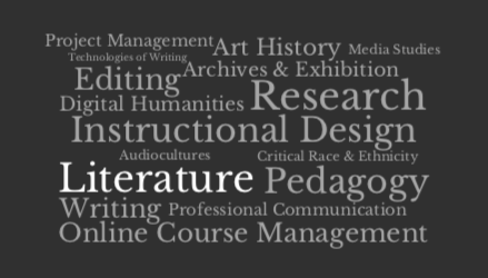 Word cloud of professional skills.